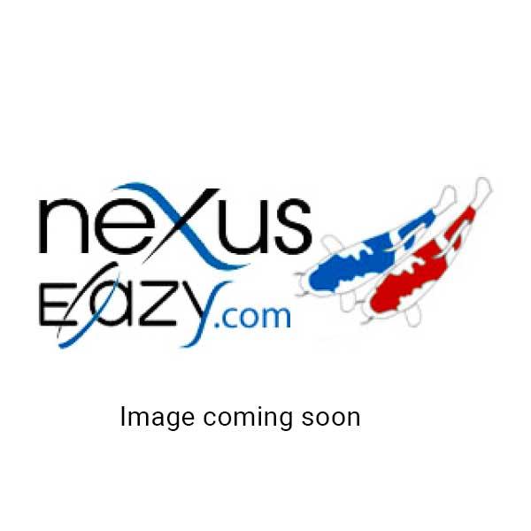 Nexus 320 +